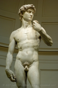 MICHELANGELO_1501-04_David_source_sandstead_d2h_97