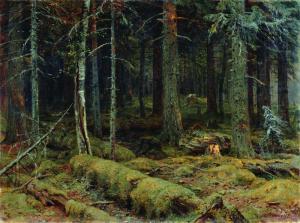 1890 Dark Forest