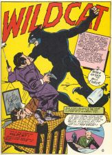 Wildcat_Hasen_Sensation_Comics_1